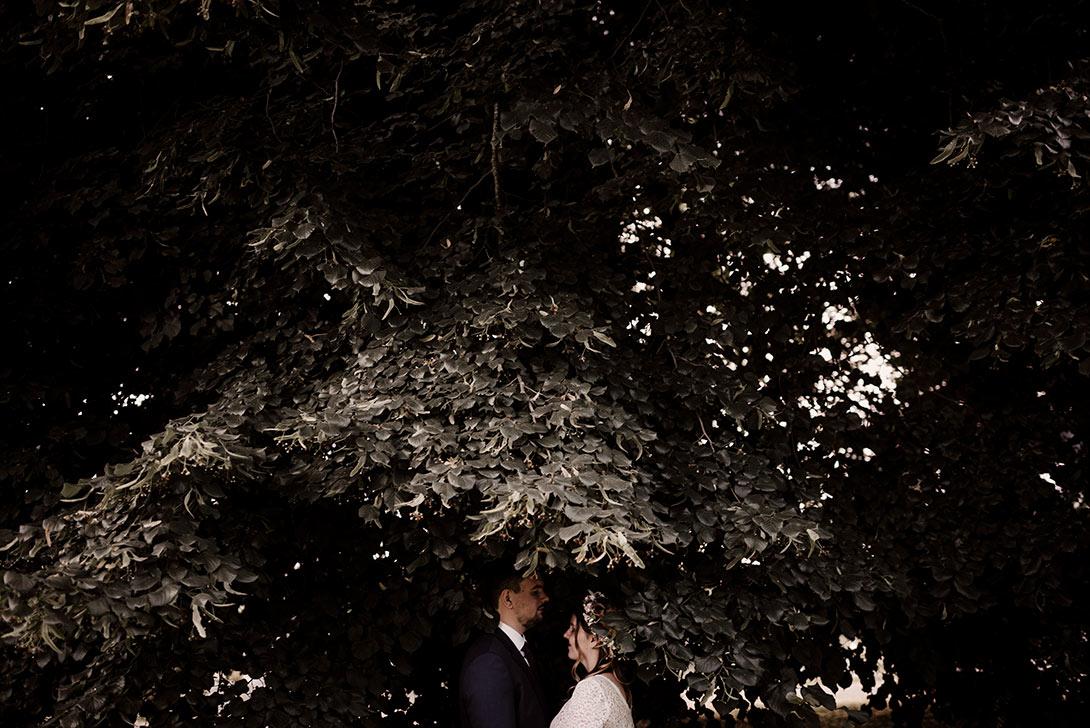 photo du couple de marié dans les feuillages d'un arbre